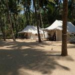 The tents at Cola Beach