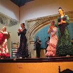 Flamenco Cardenal