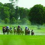Gowran Park Racecourse Foto