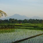 Hinterland von Yeh Gangga mit dem Vulkan Batukaru