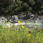 View in April from the trail above the South Fork Yuba River