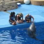 Photo de uShaka Sea World Aquarium