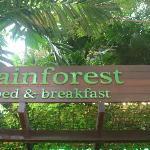 Rainforest BnB Hotel - great stay!