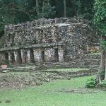 Phantastische Mayastätte im Dschungel