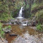 Gortin Glen Forest Park