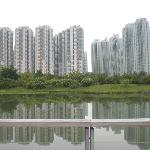 the swamp with high rise buildings at the background