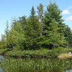 North Bay and main lake