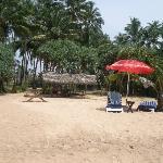 Escoffier beach view
