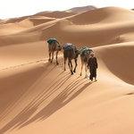 Echigaga Desert