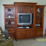 #803 Living room Tv