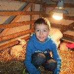 Easter 2012 Tosson Tower Farm