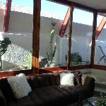 View of panorama of windows upon our private cactus garden