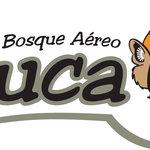 Foto de Bosque Aereo Euca