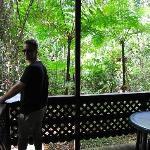 Our verandah - a lovely spot to read