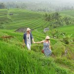 Visit the Rice fields