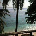 View in the morning from Bungalow 4