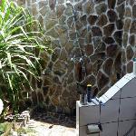 Duschen mit Palme