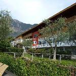 Garten mit Blick auf Olivenbäume und Hotel