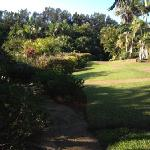 the grounds at resort