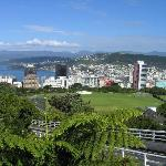 Wellington. View over city from the upper lookout of cable car.