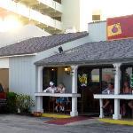 Red Onion - Vero Beach, FL