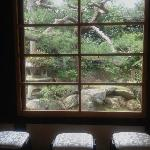 View from meditation room