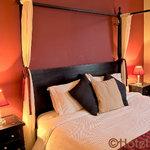 Our Scarlet Suite
