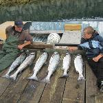 The catch from Haida Soul fishing charter!!