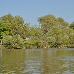 boating at Park Hayarkon Lake