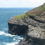 Kilauea Point National Wildlife Refuge - Cliff