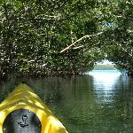 Kayak Tunnel