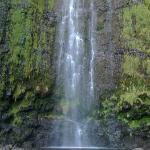 One of many gorgeous Maui falls