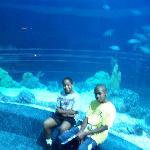 Aquarium Pyramid - Jayson & Josh in front of tank