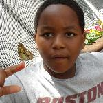 Rainforest Pyramid - Butterfly on Jayson's finger