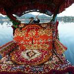 plush interior of Nagin lake shikara