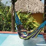 Hammock + swimming pool = full relax
