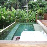 Our pool in the jungle