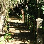 an ancient walkway to the grotto