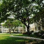 Colonial Suite, backyard
