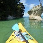 The kayaking off the coast of Abel Tasman was simply spectacular.