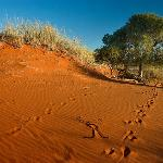 Dunes on Reserve