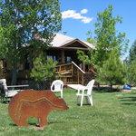 Welcome to Sundance Bear