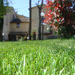 L'erba del nostro giardino