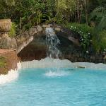 Swimming pool is large and well landscaped