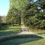 Wunderschöner Park mit alten Bäumen