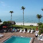 Pool overlooks the Beach