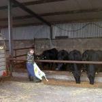 Sean on the working farm