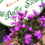 Agriturismo Bella-Sicilia