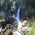 Begbie Falls hike Revelstoke BC