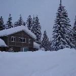 Winter 2010-11